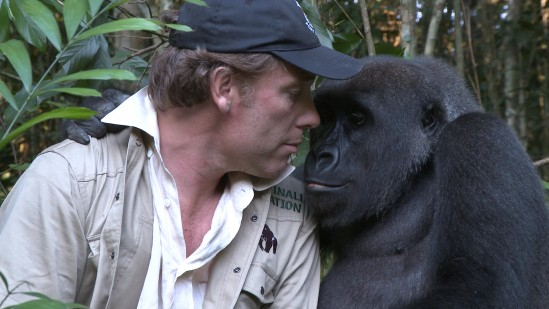 Damien and Gorilla hug